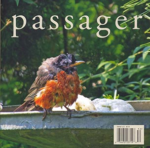Issue 52 cover, image of a wet robin at a birdbath