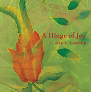 A Hinge of Joy cover