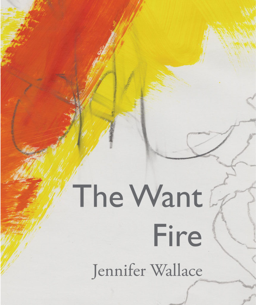 The Want Fire cover