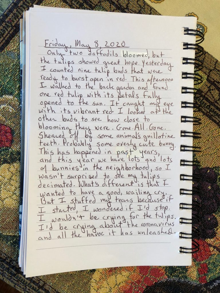 Photo of handwritten journal entry